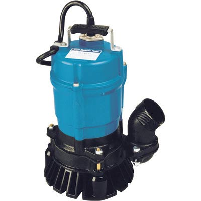 Where to find 2  ELEC. SUBMERSIBLE PUMP in Savannah
